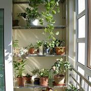 阳台简约现代设计