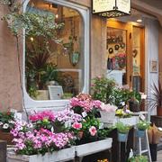 现代花店灯光设计