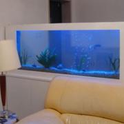 简约风格玄关鱼缸装饰