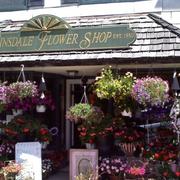 现代花店设计图