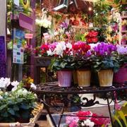 唯美的花店整体设计