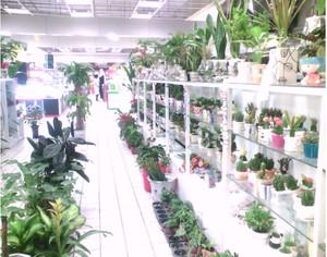 繁华地带鲜花店装修效果图