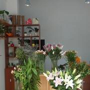 温馨花店装修设计
