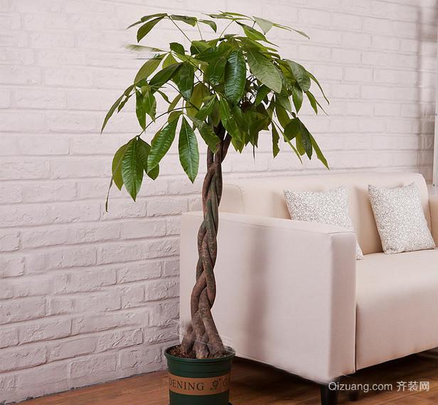 90平米清新家庭发财树装修效果图