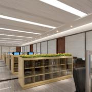 经典办公室吊顶造型设计