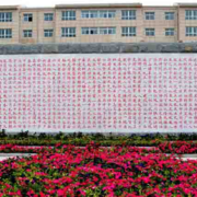 朴实文化墙装修