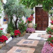 唯美大型别墅入户花园装修