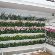 阳台设计实景图