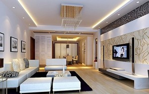 精美的客厅造型图