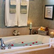 浴室浴缸整体图