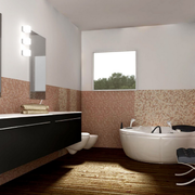 浴室整体造型图