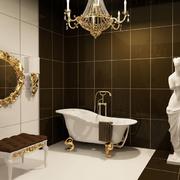 洗手间造型图