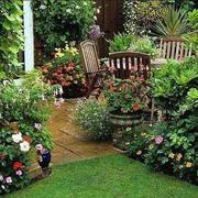 家庭园艺设计装修环境图