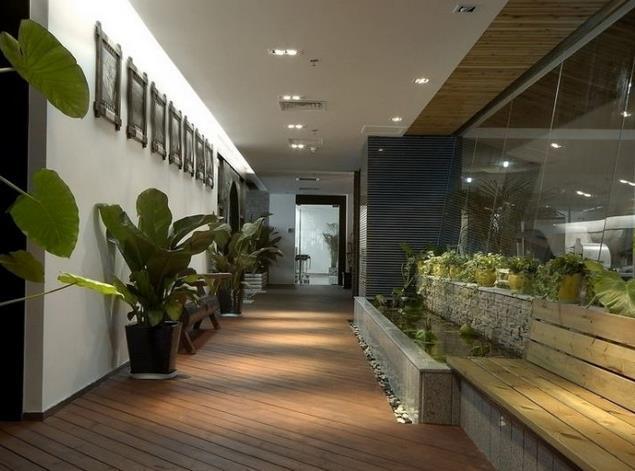 办公室 绿化室内 盆栽 装修 设计 效果图 齐装网装
