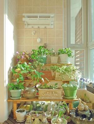 温馨家庭小阳台花架装修效果图