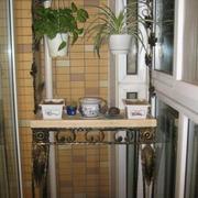 家庭阳台花架装修图