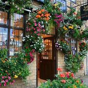 多彩绚丽的鲜花店