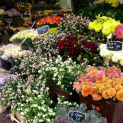 鲜花店造型设计