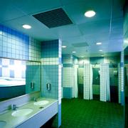 绚丽多彩的厕所装修图