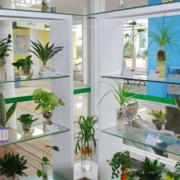 新鲜花店装修效果图