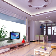 欧式电视背景墙装修效果图