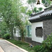 美轮美奂的庭院设计