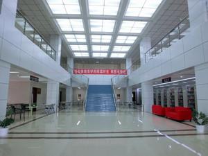 大户型藏书馆大厅