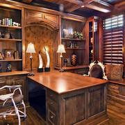 精致生态木书柜