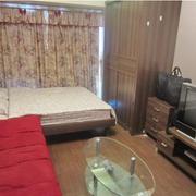 一居室公寓装潢