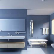 蓝色干净的卫生间