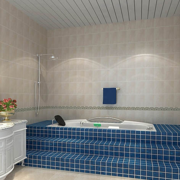 卫生间精致浴缸展示