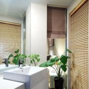 卫生间窗帘装饰