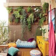 阳台壁挂式盆栽