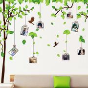 幼儿园清新照片墙