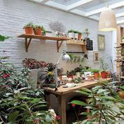 花园墙上花架展示