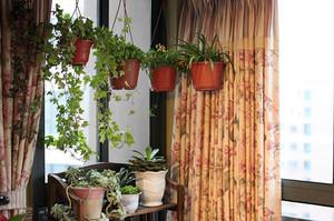露台壁挂式盆景