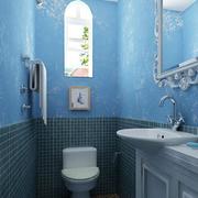 卫生间蓝色墙壁展示