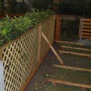 庭院竹子围墙