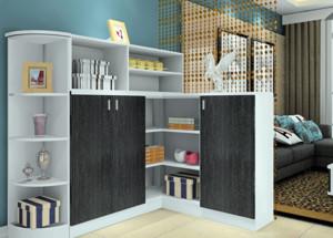 客厅黑白经典色的置物柜