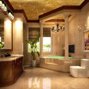 大户型别墅卫生间展示