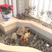 入户花园小鱼塘布置