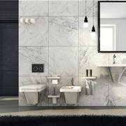 浴室精巧的瓷砖展示