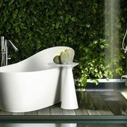 卫生间浴缸装饰欣赏
