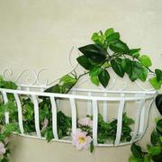 个性特别的阳台花架