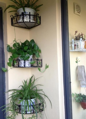 现代阳台铁艺壁挂式花架装修效果图