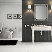 浴室镜子摆放图片