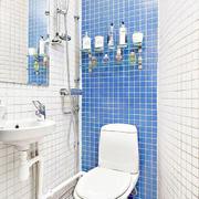 房屋卫生间蓝色背景墙