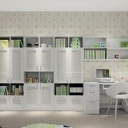 清新的书房书柜展示图