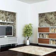 单身公寓简约电视柜