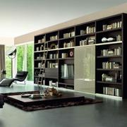 黑色经典客厅书柜
